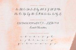 Delmona Modern Calligraphy Font Product Image 6