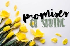 CLN- Daisy Duo - A Happy Font Pair Perfect For Spring! Product Image 6