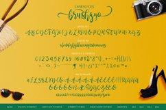 brushgyo typeface Product Image 3