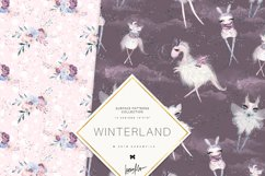 Winter Fairies Patterns Product Image 3