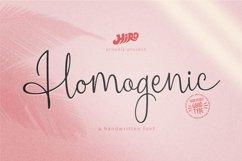 Homogenic Font Product Image 1