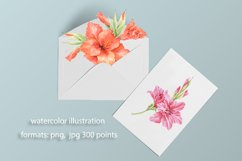 Lilies watercolor flower collection Product Image 4