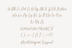 Magista Brush - Handbrush Font Product Image 3