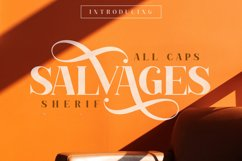 SALVAGES BOLD   SERIF FONT Product Image 1