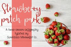 Strawberry Patch Park Product Image 1