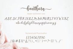 Hawthorn Product Image 3