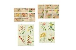 Blooming Desert Rose Botanical Journal Scrapbook Kit Product Image 4