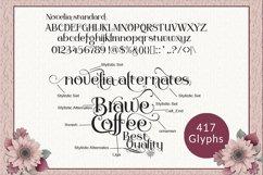 Novelia Typeface Product Image 5