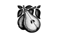 Pear hand drawn vintage style vector illustrations. Product Image 3