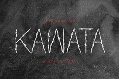 Web Font Kawata Font Product Image 1
