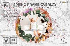 Spring flower digital frames overlay Easter Product Image 2