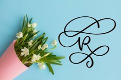 Web Font Swirly Letters - Monogram Font Product Image 3