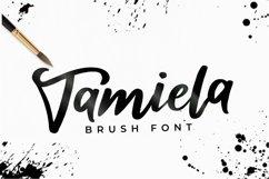 Tamiela - Brush Font Product Image 1