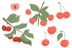 Cherry hand drawn clip art Product Image 6