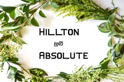 Hillton and Absolute Italic Product Image 1