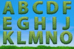 Grass spring summer alphabet. PNG graphic eco font Product Image 5