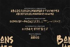 Web Font Banshee - Brush Font Product Image 6