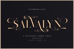 Salvalyn - Stylistic Serif Font Product Image 1
