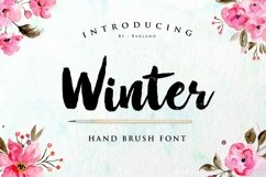 BIG PACKAGE - Font Bundle Collection Product Image 5