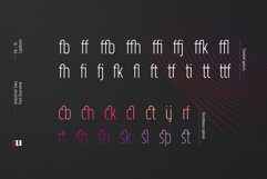 Industrial Sans Typeface Product Image 6
