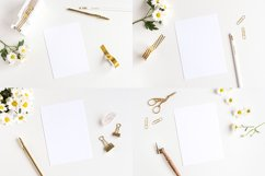 The Daisy Bundle - 11 Mockups and a Stock Photo Product Image 2