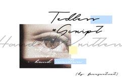 Tedless Handwritten Font Product Image 1