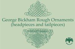 George Bickham Rough Ornaments Product Image 3