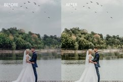30 camera raw presets wedding brown   wedding presets Product Image 2