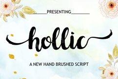 Hollic Brush Product Image 2