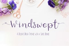 Windswept, a Brush script font Product Image 1