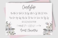 Candylife Modern Monoline Calligraphy Font Product Image 6