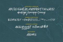 Shegard | A Stylish Brush Font Product Image 4