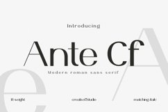 Ante Cf Font Family Product Image 1