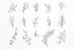 Floral logo elements-logo frames-botany-vector SVG PNG Product Image 3