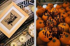 Thanksgiving bundle svg Gobble SVG Pumpkins svg Turkey Product Image 4