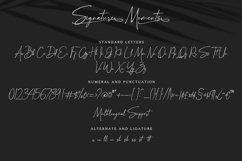 Signature Moments - Classy Signature Font Product Image 13