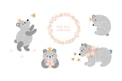 Baby Bear Collection Product Image 1