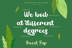 Sweet Fig Product Image 4