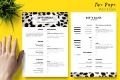 Animal Care Resume CV Template for Word & Pages Betty Bauer Product Image 3
