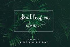 Shefilla Script Font Product Image 2