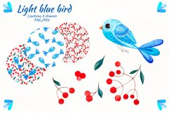 """Watercolor set """"Colored birds"""" Product Image 4"""