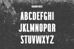 Raanan Classic Sans Serif Font Family Product Image 3