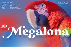 BD Megalona   Serif Font Family Product Image 1