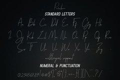 Parakan Script Product Image 6