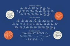 Web Font Athelia Quin Font Product Image 4