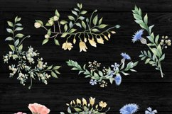 Romantic garden. Watercolor cliparts Product Image 5