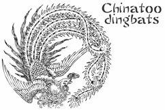 Chinatoo Product Image 5