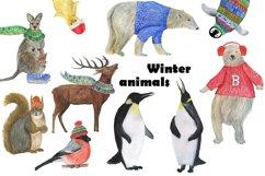 Winter animals Product Image 1