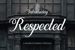 Web Font Respected Product Image 1