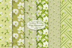 White Hippeastrum. Base Elements for Wedding Floristry. Product Image 4